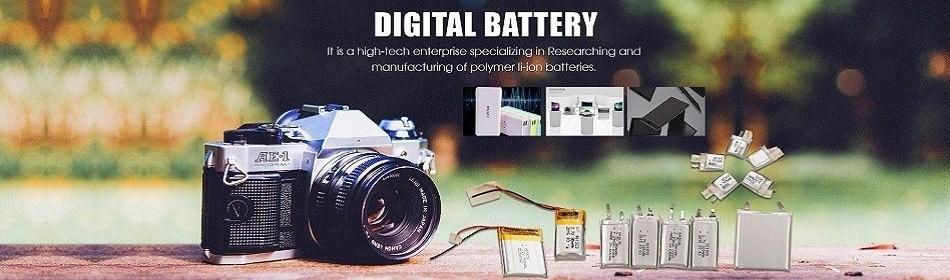 OEM li-ion battery
