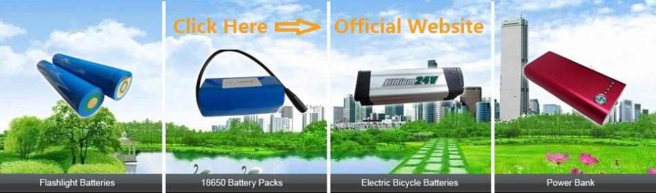 china li po battery supplier