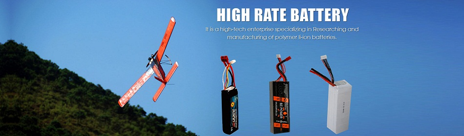High Rate Battery