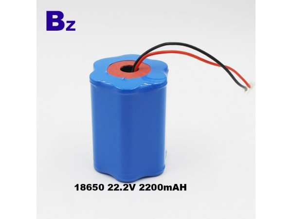 Special Lipo Battery - BZ 18650 - 6S - 2200mAh - 22.2V - Lithium Ion Battery - Rechargeable