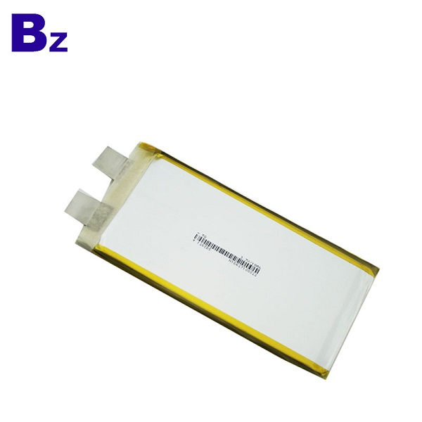 10Ah Rechargeable LiPo Battery
