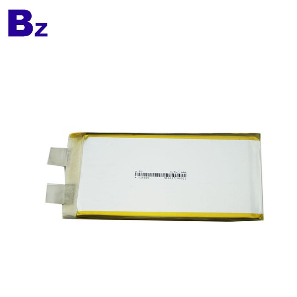 10Ah LiPo Battery