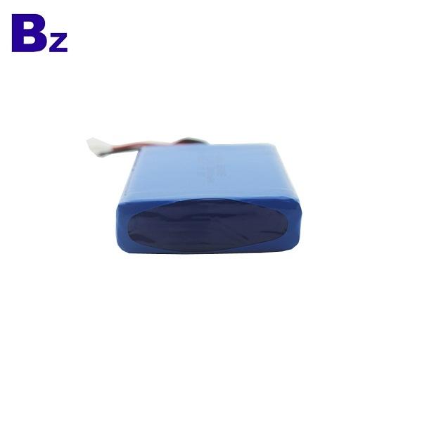 10000mAh Rechargeable Li-Polymer Battery