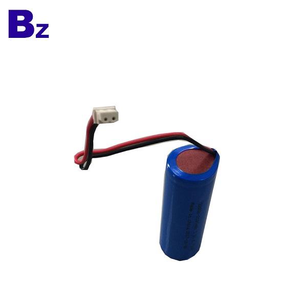 Customized LiFePO4 Battery