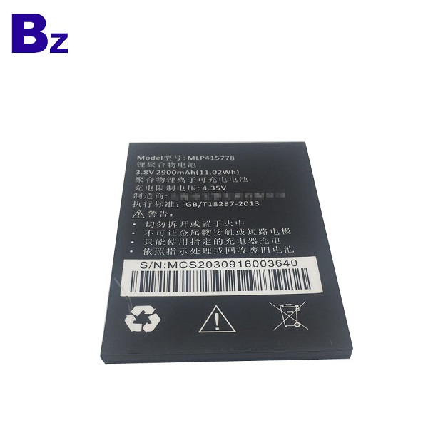 2900mah 3.8V Rechargeable Li-Ion Battery
