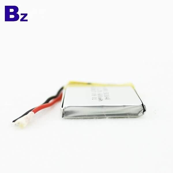 Rechargeable Li-Polymer Battery