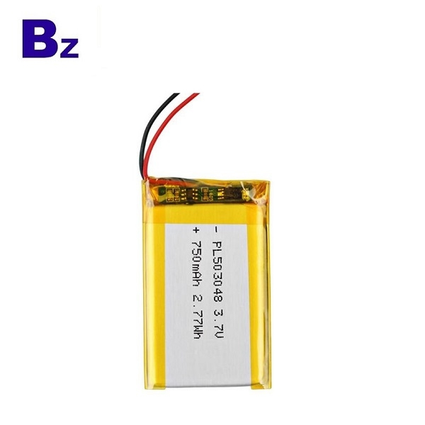 Battery of Digital Photo Frame