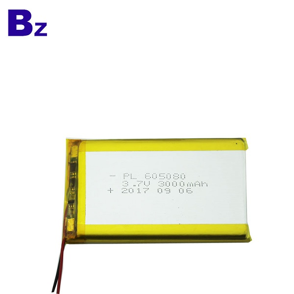 3000mah Rechargeable LiPo Battery