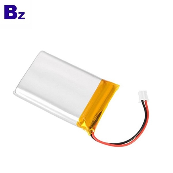Factory Customized Lithium Battery
