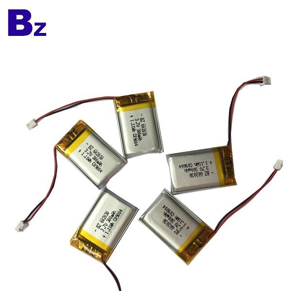 300mAh Li-Polymer Battery