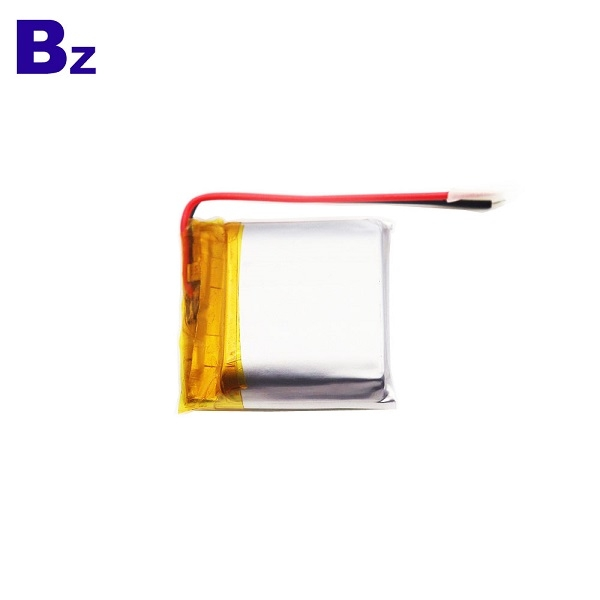 Direct Sale 3.7V Li-Polymer Battery