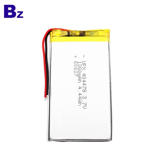 1200mAh Li Polymer Battery